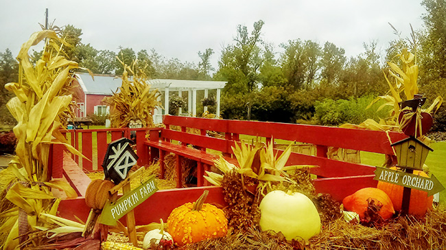 Oct 13 & 14 @ Gilby's Orchard | Aitkin | Minnesota | United States