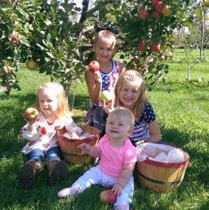 Apple Fest – Oct 7 & 8 @ Gilby's Orchard | Aitkin | Minnesota | United States