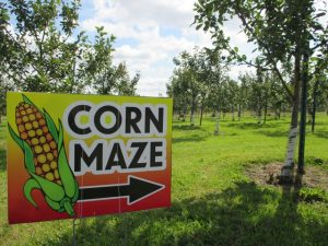 Fall Harvest - Sept 8 & 9 @ Gilby's Orchard | Aitkin | Minnesota | United States