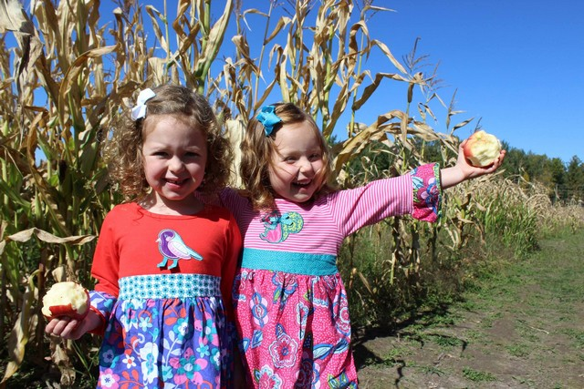 Apple Fest – Sept 23 & 24 @ Gilby's Orchard | Aitkin | Minnesota | United States