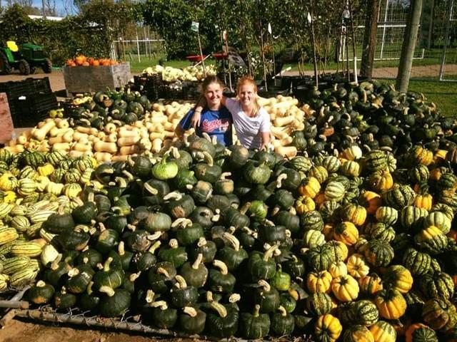 Oct 27 & 28 @ Gilby's Orchard | Aitkin | Minnesota | United States