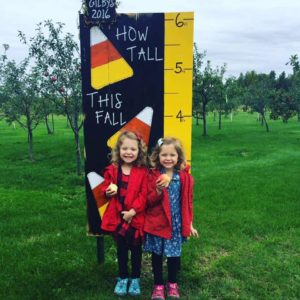 Fall Harvest Sept 16 & 17 @ Gilby's Orchard | Aitkin | Minnesota | United States