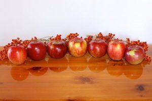 Minnesota ruddy-apples-500
