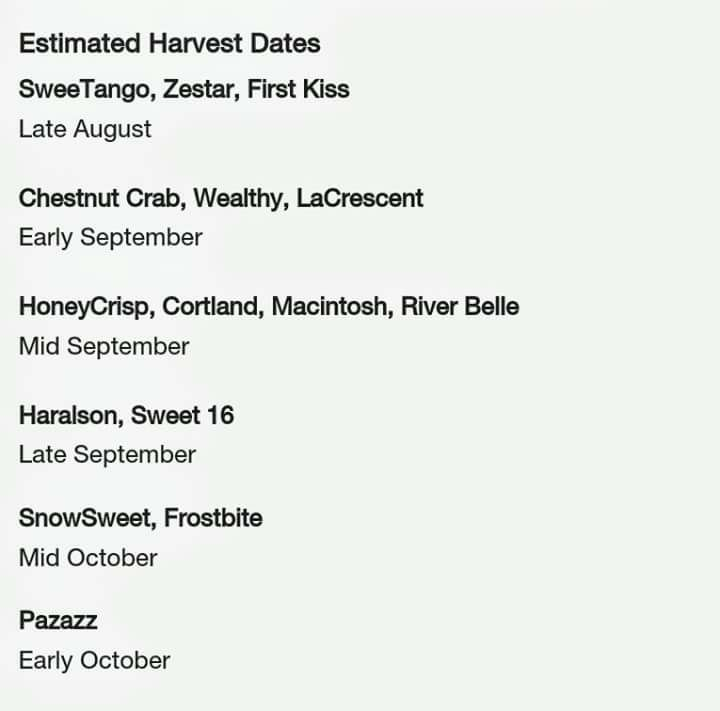 MN Estimated Apple Harvest Dates