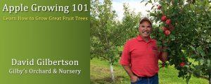 Apple Tree Growing Classes