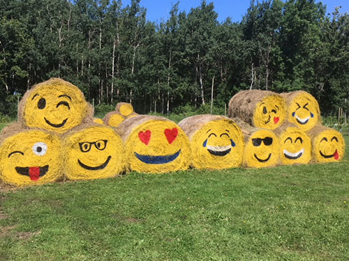 HayBale Emojis