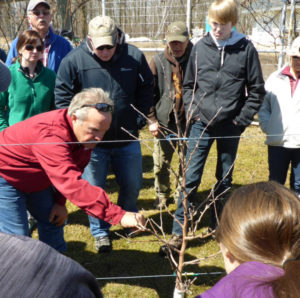 Beginner Apple Growing - April 20, 2019 @ Gilby's Orchard
