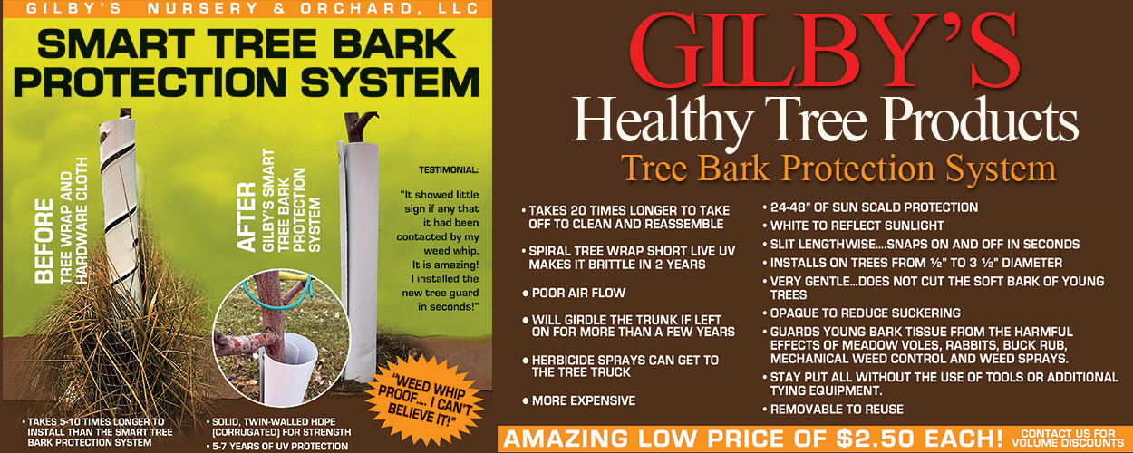 Tree Bark Protection