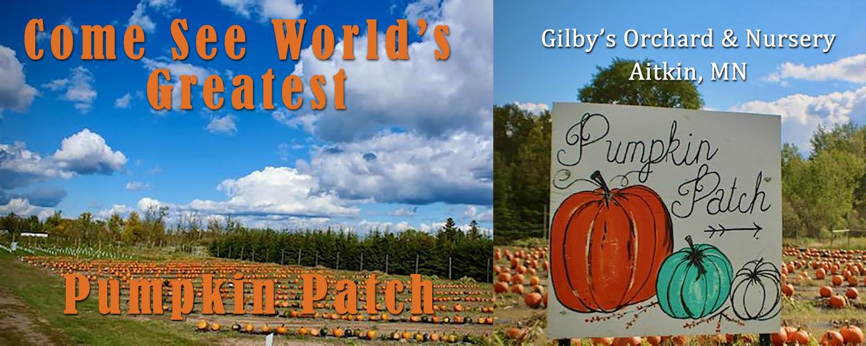 World's Greatest Pumpkin Patch?